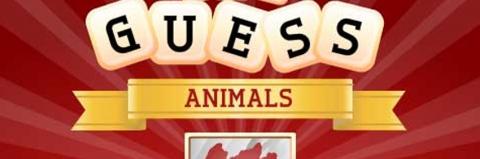 Scratch & Guess Animals